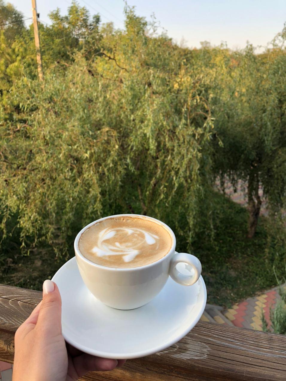 кава в лісі